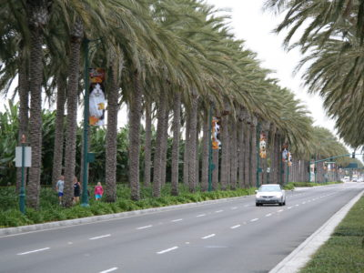Disney Resort Streetscapes, Anaheim